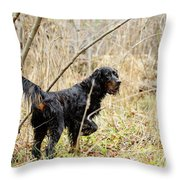 Peat Throw Pillow