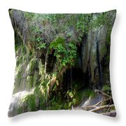 Gormon Falls Colorado Bend State Park.  Throw Pillow