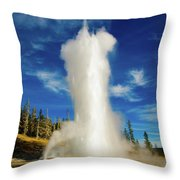 Grand Geyser Throw Pillow