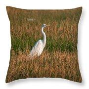 Great Egret At Coba Village Throw Pillow
