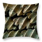 Great Hammerhead Shark Skin, Sem Throw Pillow