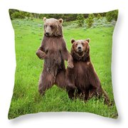 Grizzly Bear Arctos Ursus Throw Pillow