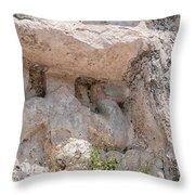 Grupo Nohoch Mul At The Coba Ruins  Throw Pillow