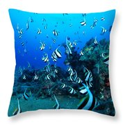 Hawaiian Reef Scene Throw Pillow