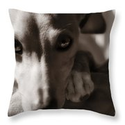 Heart You Italian Greyhound Throw Pillow