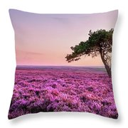 Heather At Sunset  Throw Pillow