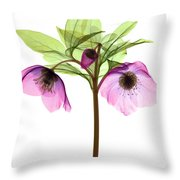 Hellebore Flowers, X-ray Throw Pillow