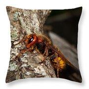 Hornet Vespa Crabo Throw Pillow