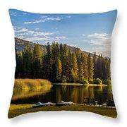 Hume Lake Throw Pillow