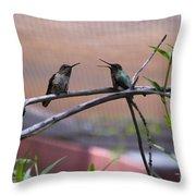 2 Hummingbirds Throw Pillow