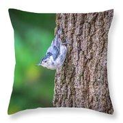Huthatch Bird  Nut Pecker In The Wild On A Tree Throw Pillow