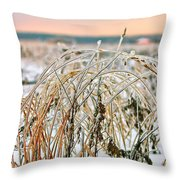 Ice On Branches Throw Pillow