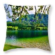 Images Landscape Throw Pillow