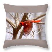 Img_0001 - Northern Cardinal Throw Pillow