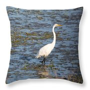 In The Water Throw Pillow