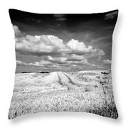 Infrared Landscape In Norway Throw Pillow