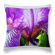 Iris Macro Throw Pillow