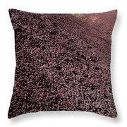 John Day Fossil Beds  Throw Pillow