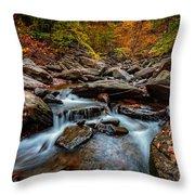 Kaaterskill Creek Throw Pillow