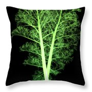 Kale, Brassica Oleracea, X-ray Throw Pillow