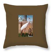 kb Marks Henry-Indian Crane Bullfinch and Thrush Henry Stacy Marks Throw Pillow