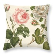 Kinds Of Roses Throw Pillow