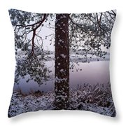 Landscape In Pastel Colors Throw Pillow