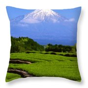 Landscape Pics Throw Pillow
