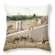 Lebanon: Baalbek Throw Pillow