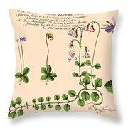 Linnaea Borealis, Linnaeuss Favorite Throw Pillow