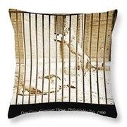Lion Cage, Carnivore House, Philadelphia Zoo, C. 1900 Throw Pillow