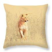 lioness Masai Mara, Kenya Throw Pillow
