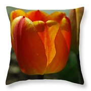 2 Lips Throw Pillow