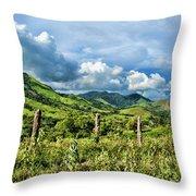 Llanos Venezolanos Throw Pillow
