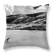 Loch Ness Monster, 1934 Throw Pillow