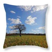 Lone Oak Tree In English Countryside Throw Pillow