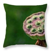 Lotus Seeds Throw Pillow