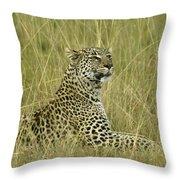 Lovely Leopard Throw Pillow