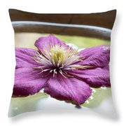 Clematis Flower On Water Throw Pillow