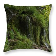Malanaphy Springs Throw Pillow
