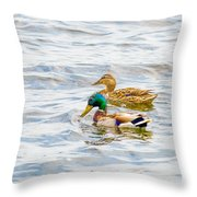 Male And Female Ducks Throw Pillow