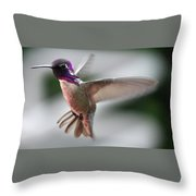 Male Anna's In Flight Throw Pillow