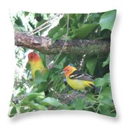 2 Male Western Tanagers Throw Pillow