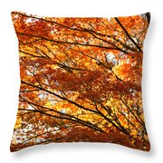 Maple Tree Foliage Throw Pillow