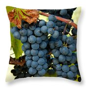 Marechal Foch Grapes Throw Pillow