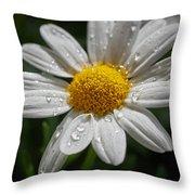 Marguerite Daisy Throw Pillow