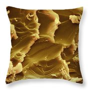 Martian Meteorite, Sem Throw Pillow