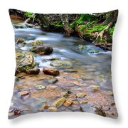 Middle Fork Of Williams River Throw Pillow