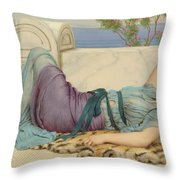 Mischief And Repose Throw Pillow