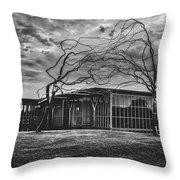 Modern Art Museum Of Fort Worth Throw Pillow